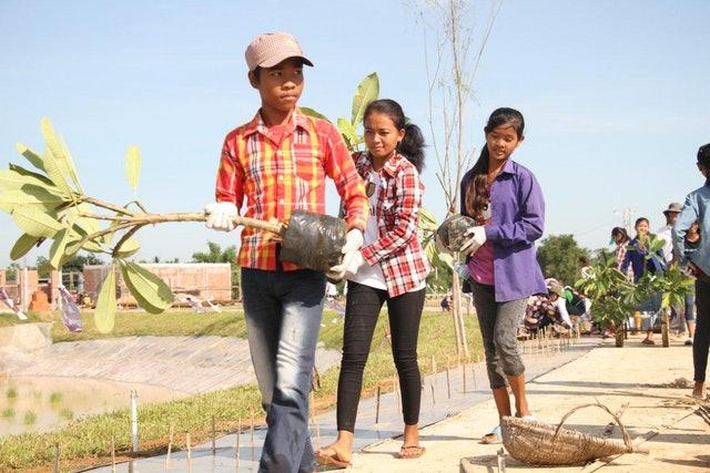Mabet, gelecek için ekim yapma konusunda çocuk ve gençlere ilham vermektedir - 01