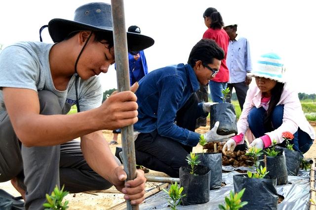 Mabet, gelecek için ekim yapma konusunda çocuk ve gençlere ilham vermektedir - 05