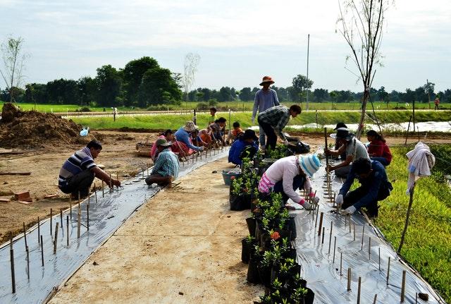 Mabet, gelecek için ekim yapma konusunda çocuk ve gençlere ilham vermektedir - 06