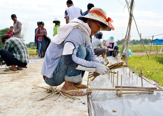 Mabet, gelecek için ekim yapma konusunda çocuk ve gençlere ilham vermektedir - 08