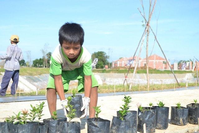 Mabet, gelecek için ekim yapma konusunda çocuk ve gençlere ilham vermektedir - 10