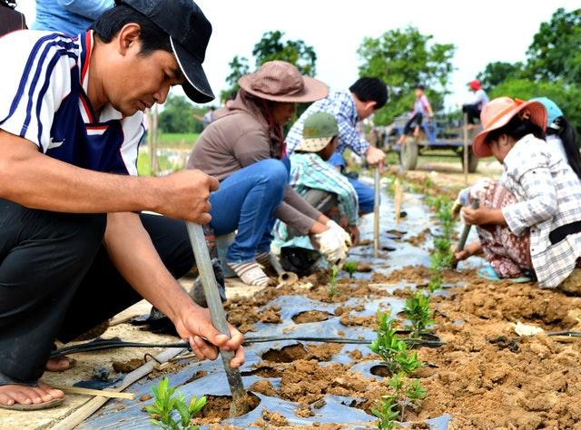 Mabet, gelecek için ekim yapma konusunda çocuk ve gençlere ilham vermektedir - 11