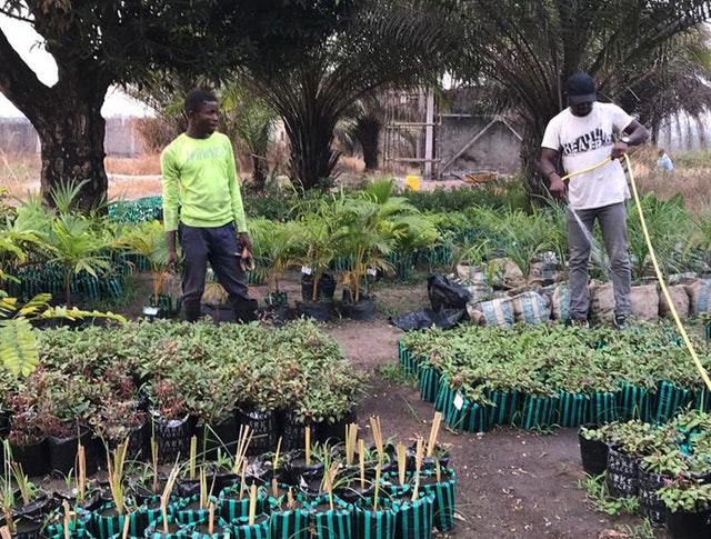 Demokratik Kongo Cumhuriyeti ve Kenya'da Mabet inşaatları devam ediyor 04