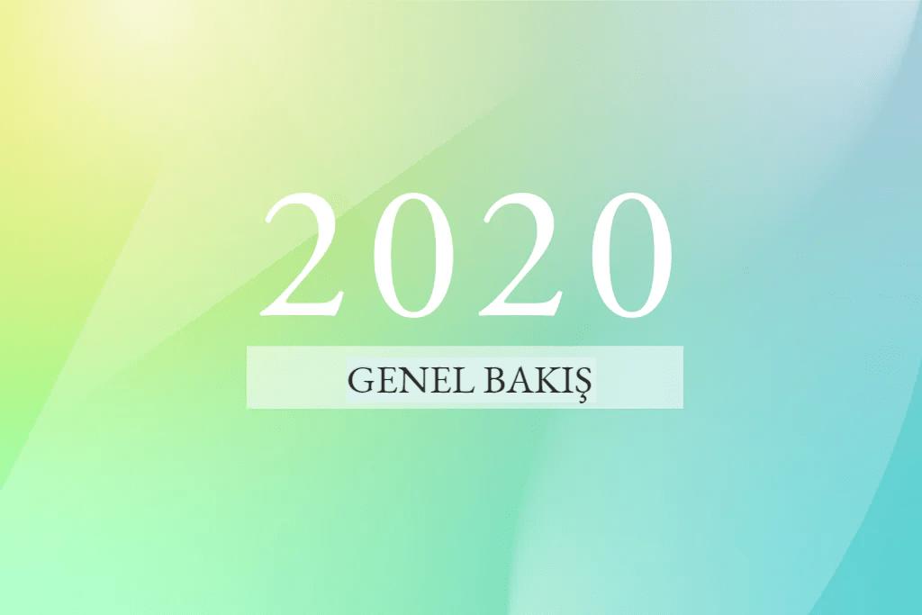 2020'ye genel bakış eşi benzeri görülmemiş bir yıl 00